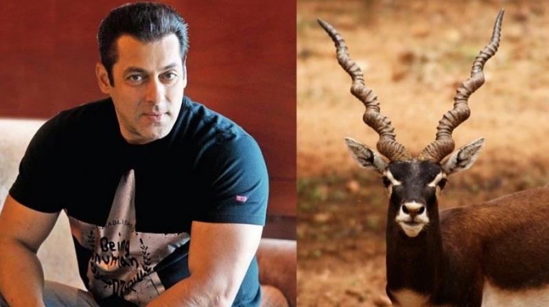 Image result for Salman Khan blackbuck