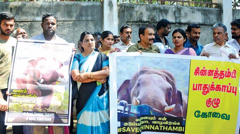 Environmentalists, animal activists, heads and  representatives of various NGO's with their petition at the district collectorate on Monday (Photo: DC)