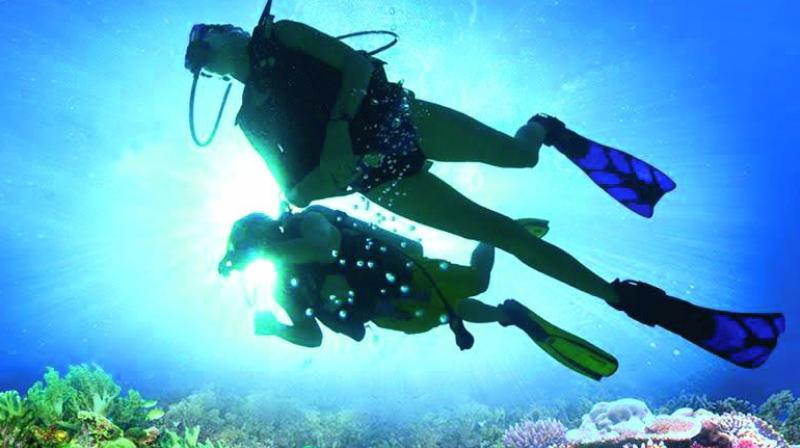 Diving can be experienced even from a depth of one metre.