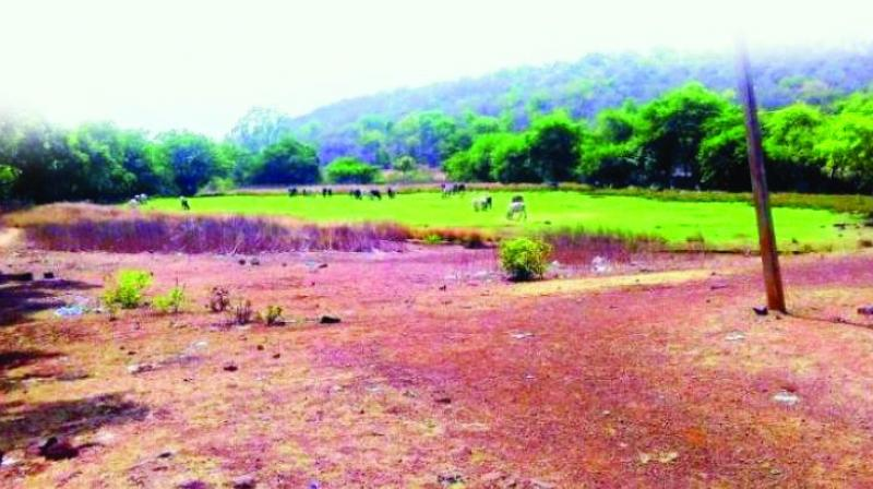 During the land record purification drive recently undertaken by the revenue department, officials found that 10.37 lakh acres of land in the state was under dispute.