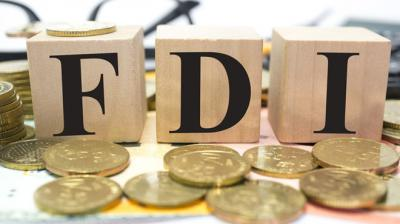 The UN trade report said the prospects for FDI inflows into South Asia are largely determined by expectations of growing investment into India.