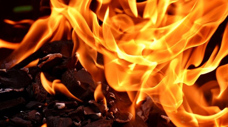 After catching the siblings, the neighbours yelled at the mother urging her to jump, but the woman gradually passed out as smoke billowed out of their apartment. (Photo: Pixabay)