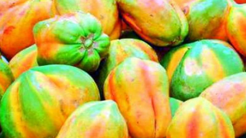 Officials of the vigilance and enforcement in association with food safety officials raided a fruits godown and seized four tonnes of artificially ripened papayas at Seethampeta area in Vizag city.
