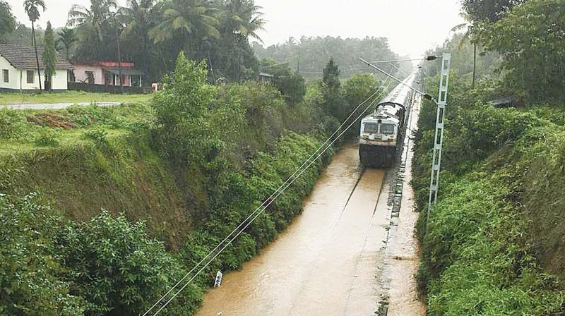 The Matsyagandha Express had to be stopped for 15 minutes at Kedur village near Kundapur in Udupi district as rainwater submerged the track. The train proceeded after water receded. (Inset) A peepal tree fell on the Netravathi Express at the Udupi railway station on Tuesday. No casualties were reported – DC