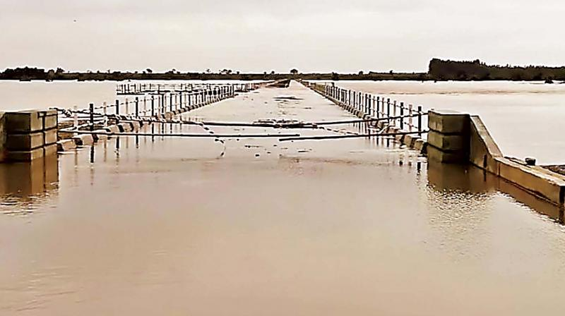 Overflowing Krishna river near Raichur —KPN