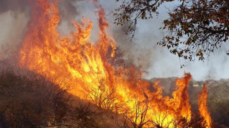 Firefighters were working to stop the blaze reaching nearby villages. (Photo: Representational Image/AP)