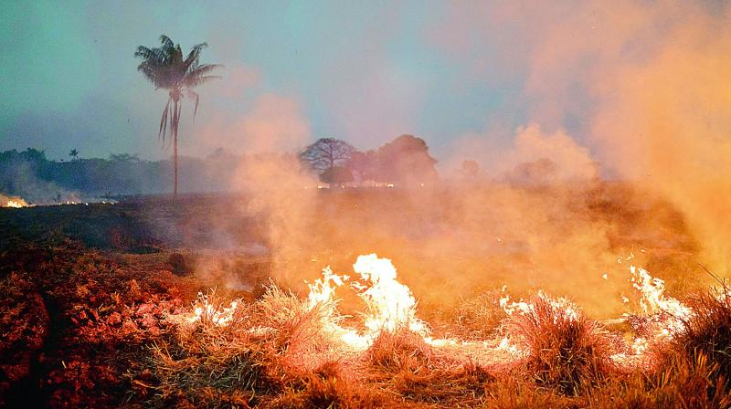 A fire burns a field on a farm in  in the state of Mato Grosso, Brazil, on Friday. (Photo: AP)