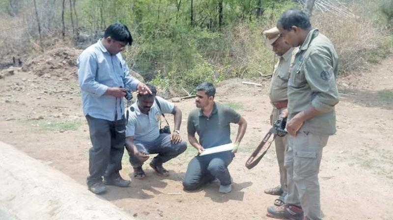 Officials and members of NGO involved in animal census in the forest areas of Salem district.(Image DC)