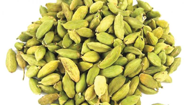 The Rs 5,000 per kg at the auction held at South Indian Green Cardamom Company Ltd, Kochi bettered the previous high of Rs 4,503 per kg recorded at MAS Enterprises, Vandanmedu on June 15, 2019.