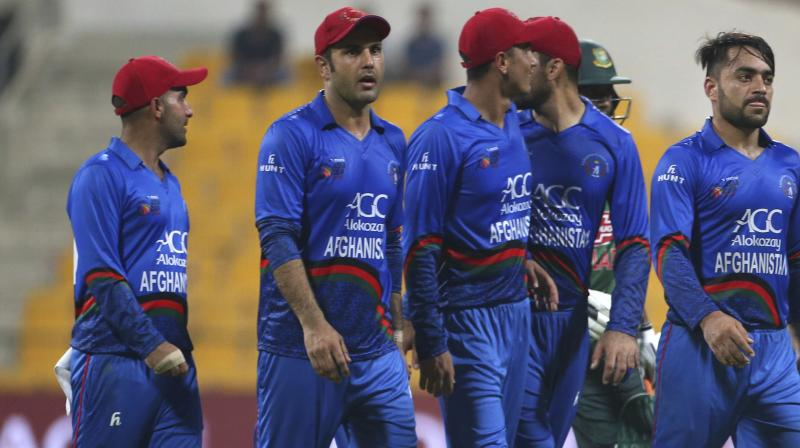 Pakistans Malik thwarts giantkillers Afghanistan in last-over finish
