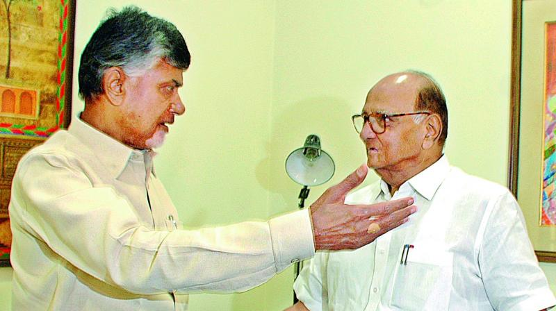 AP Chief Minister and TD chief N. Chandrababu Naidu meets NCP chief Sharad Pawar after a meeting in New Delhi on Thursday. (D. Kamraj)