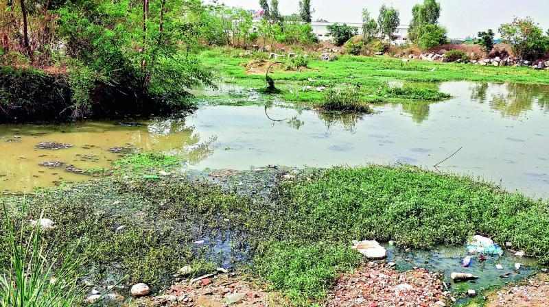 The lake cleaning project has been suffering from financial inadequacy and lack of intra-departmental  co-ordination.