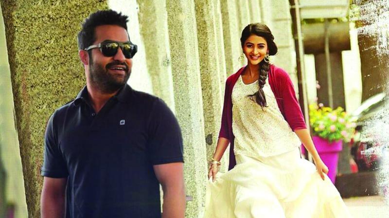 Trivikram, Jr NTR combo reels out action-packed Rayalaseema thriller thumbnail