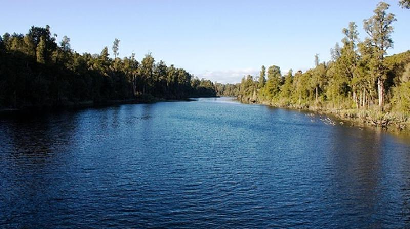 'Free-flowing rivers are important for humans and the environment alike, yet economic development around the world is making them increasingly rare. (Photo: ANI)