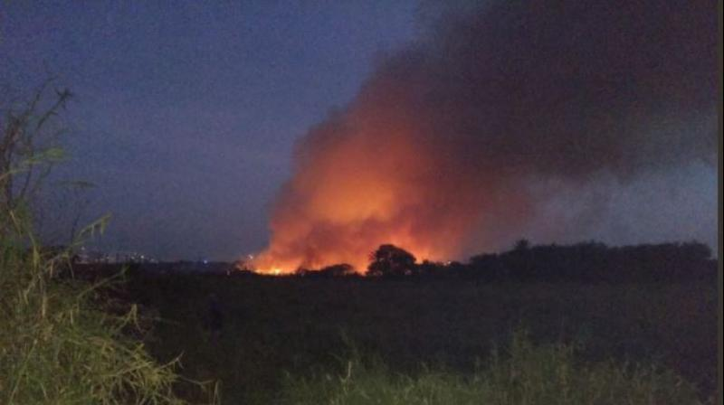 Bengaluru: Bellandur Lake goes up in big flames yet again, firefighters struggle