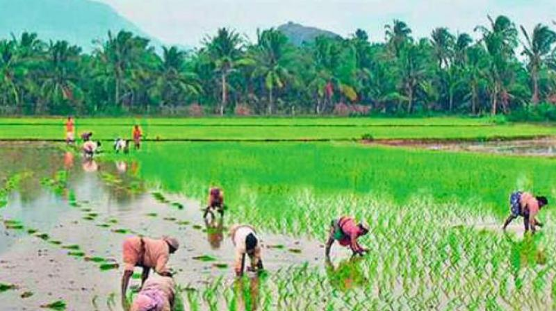 At present, farmers get for short-term farm loan of up to Rs 3 lakh at 7 per cent interest rate.