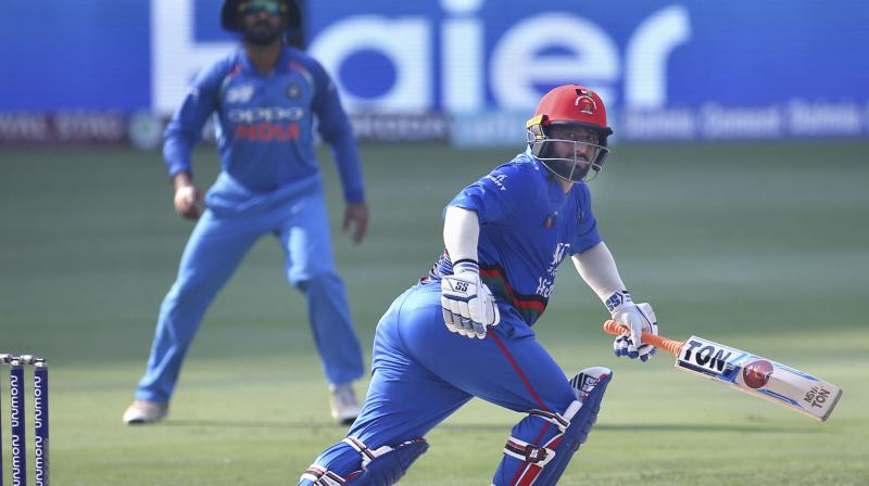 Shahzad was finally out in the 38th over but by then had given a good platform to his team. (Photo: AP)