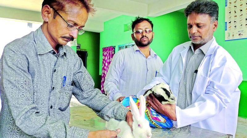 Hyderabad's oldest pet hospital still in 'ancient' era