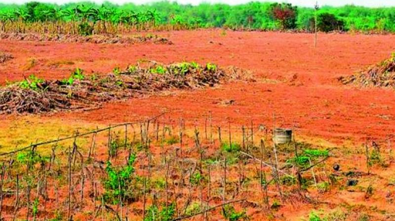 Telangana: Vacant CCLA delays land regularisation
