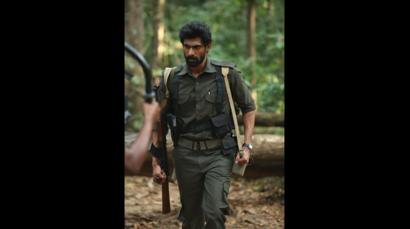 Thick jungles Tollywood's new canvas