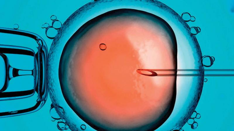 There were only 20 IVF clinics in 2012 which made a quick jump to 42 in 2017.