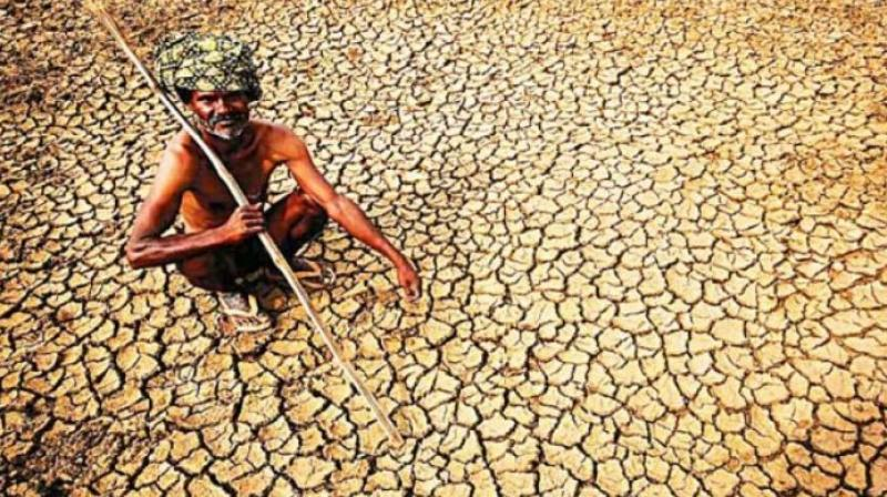 After three consecutive years of drought, the state has received fairly good rains so far except in 7-8 districts. (Photo: PTI/Representational)