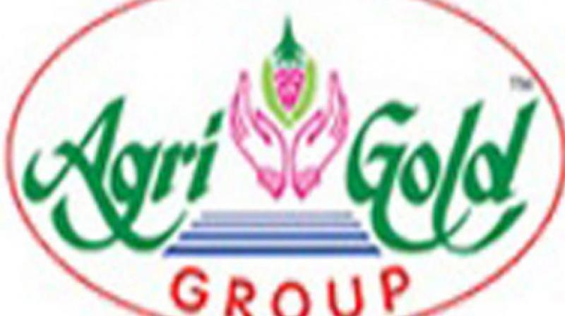 Agri Gold Group Of Companies logo