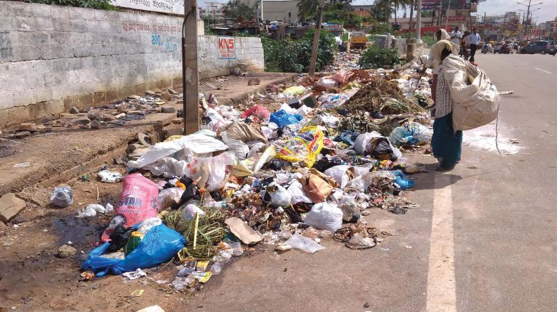 Garbage menace is the elephant in Chennai that is growing bigger