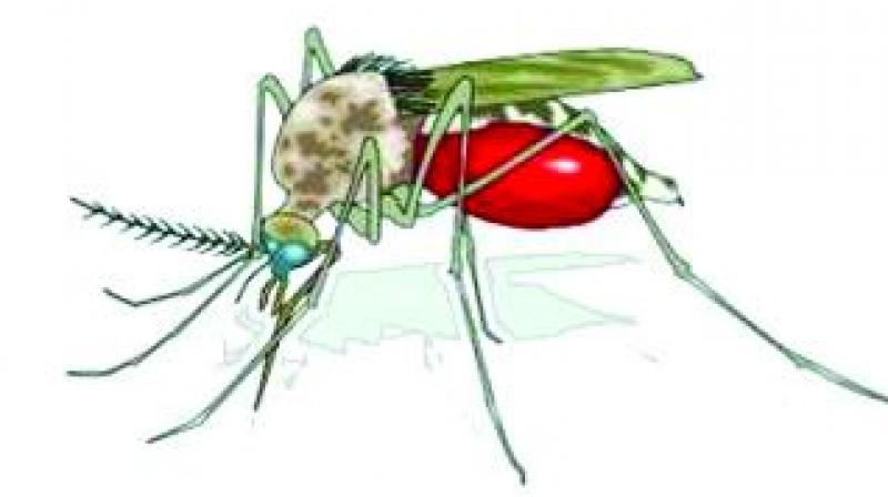 Malaria remains one of the world's leading killers, claiming the life of one child every two minutes.