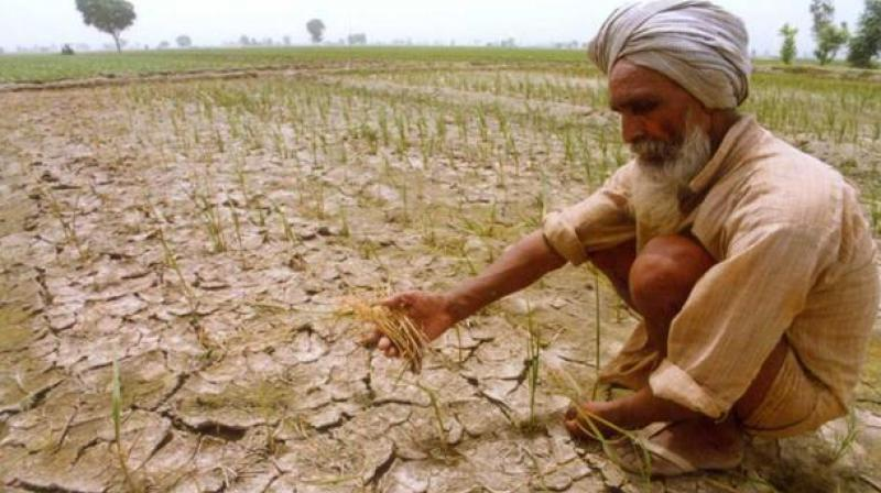 The Economic Survey on Friday warned against farm loan waivers.