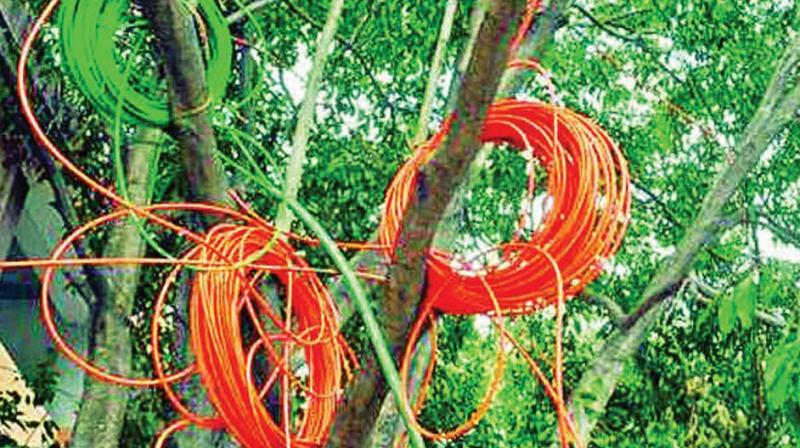 The OFC cell in the BBMP is planning to approach BBMP Commissioner and city Mayor to direct ward level officials in every zone to ensure that the companies laying OFC are held responsible for overhanging cables and digging up of roads without  permission.