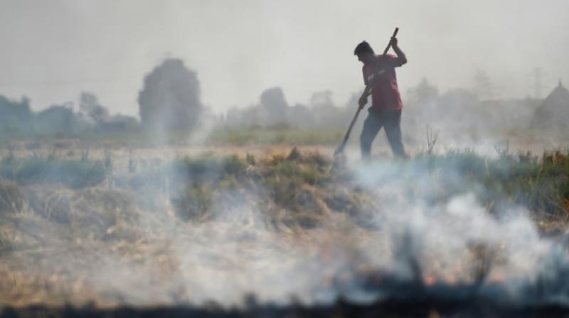 Delhi holds breath as burning farms herald pollution season