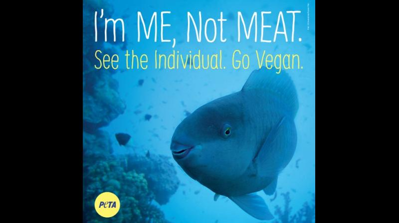 Billboards will remind everyone that one can spare sensitive aquatic animals agony of being suffocated, impaled, crushed, and cut open simply by choosing vegan meals.