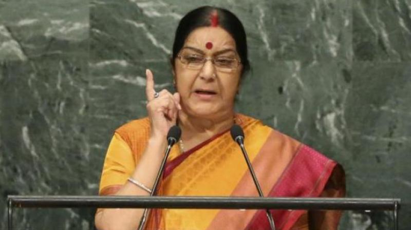 According to a member present in the meeting, External Affairs Minister Sushma Swaraj clarified that terrorism and cricket can't go hand in hand. (Photo: AP)