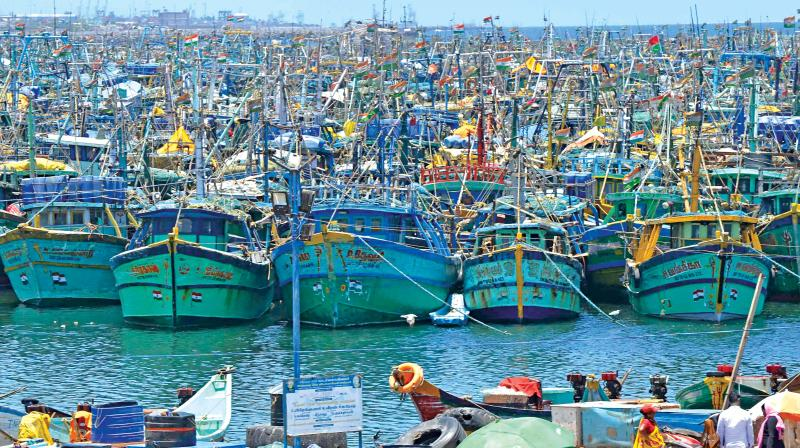 Hundreds of boats lie idle at Kasimedu as 61-day fishing ban begins on Sunday. (Photo: DC)