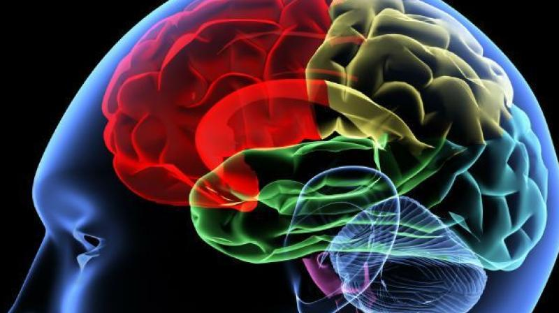 As you understand the fundamentals of brain function, you can better recognise signs of dysfunction. To understand disease, you must understand health. — Prof. Upinder S. Bhalla (Representational image)