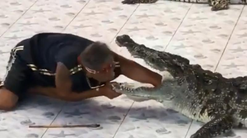 A visitor who recorded the incident said that the video seems to show that the crocodile didn't like the arm near its jaws (Photo: YouTube)