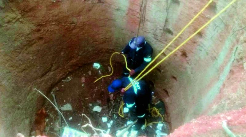 Members of the GHMC's Disaster Response Force rescue a dog from a dry well in Lower Tank Bund area.