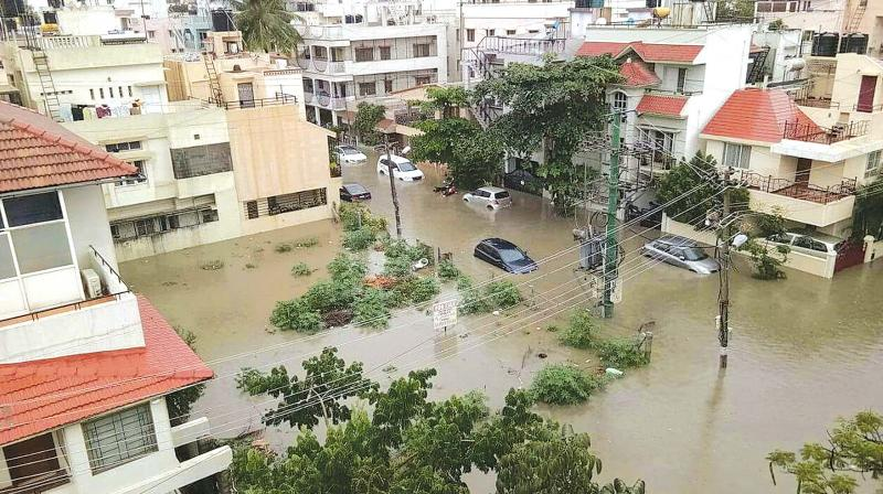 Flooded homes, uprooted trees, marathon power cuts and dinghies ferrying people around: Bengaluru awoke to chaos as the city recorded its highest rain in a 24-hour span since 1890.