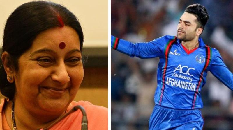 When Sushma Swaraj's tweet about giving Indian citizenship to Rashid Khan went viral