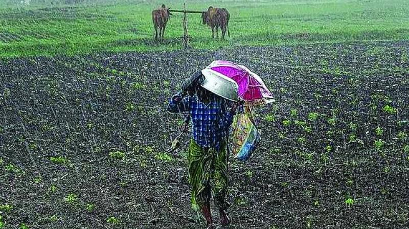 The Indian Meteorological Department (IMD) has forecast that June would be deficient and rainfall activity may pick up in July, the most crucial period of sowing the Kharif crops across India.