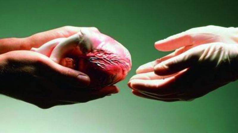 Hyderabad: Kidney, liver transplant on 2 patients