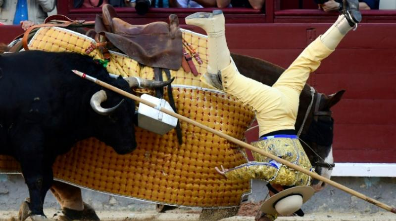 Around 500,000 enthusiasts are expected to descend on Madrid's Las Ventas arena during the month-long Feria de San Isidro, the Spanish capital's biggest bullfighting festival. (Photo: AP)