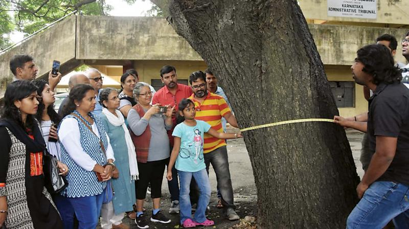 With the tree cover fast depleting in Bengaluru, such a mapping has now become imperative.
