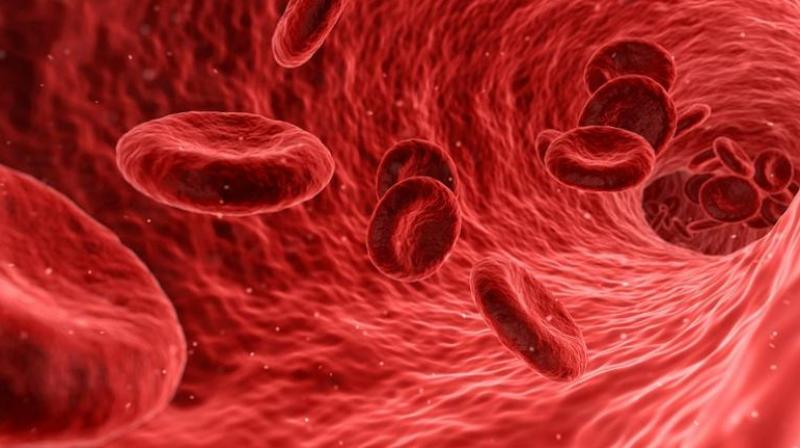A protein discovered could reduce risk of herpes-induced cancer. (Photo: Pixabay)