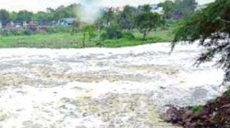 The dam at Kanakumbi is one of the projects proposed by Karnataka and opposed by Goa. (Photo: File)