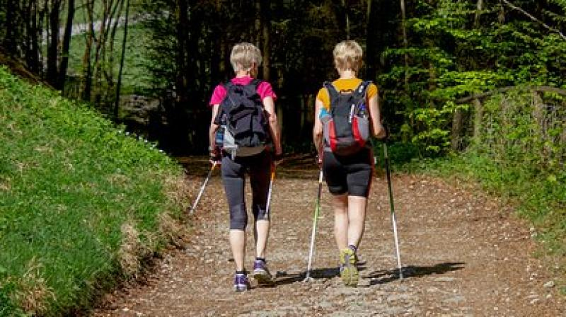 Nordic walking gives huge benefits because breast cancer patients are survivors, and from a socio-psychological point of view, that really impacts their life. (Photo: Representational/Pixabay)