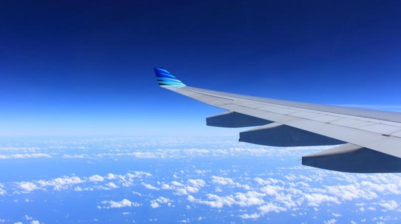 The plane took off late Sunday afternoon and climbed to a cruising altitude of just over 35,000 feet. A little over an hour later, it rapidly gained altitude and then dropped drastically within minutes. (Representational Image/ Pixabay)
