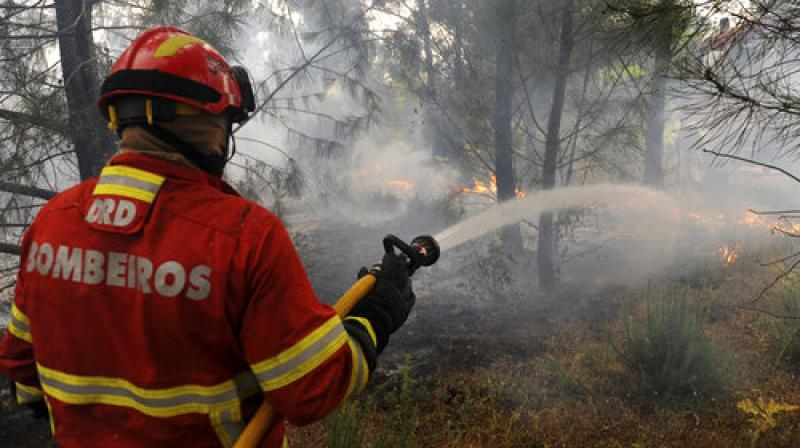 A Portuguese firefighter works to stop a forest fire from reaching the village of Figueiro dos Vinhos central Portugal (Photo: AP)