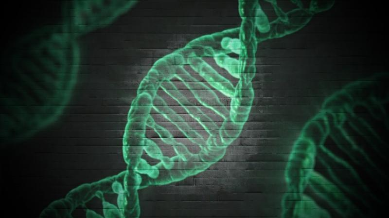 Scientist attempts to make himself superhuman by editing own DNA